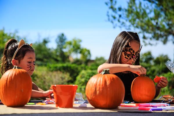 Brookfield Pumpkin Party_20151024_067