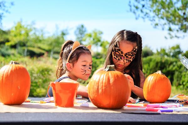 Brookfield Pumpkin Party_20151024_068