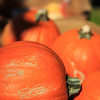 Brookfield Pumpkin Party_20151024_003