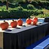 Brookfield Pumpkin Party_20151024_006
