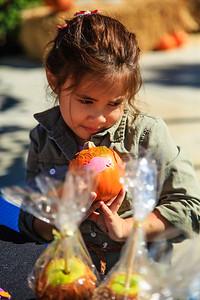 Brookfield Pumpkin Party_20151024_064