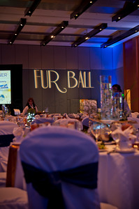 2015 Fur Ball | Peninsula SPCA | 010