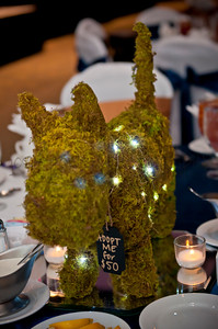 2015 Fur Ball | Peninsula SPCA | 005
