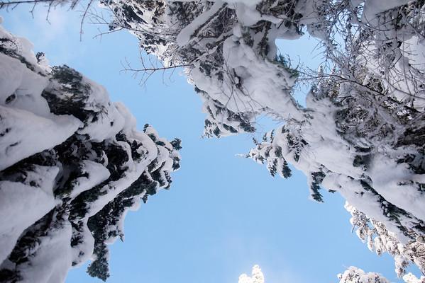 Whoa, blue skies.