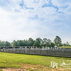 "Sept 17, 2016 - Schooling Show, Poplar Place Farm, Hamilton, GA.  Photo by John David Helms,  <a href=""http://www.johndavidhelms.com"">http://www.johndavidhelms.com</a>"