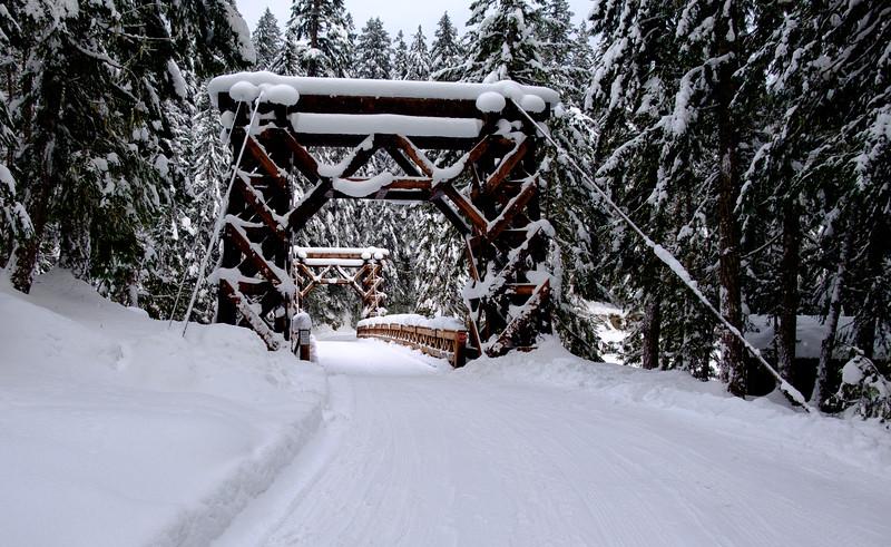 Bridge toward the Longmire campground.