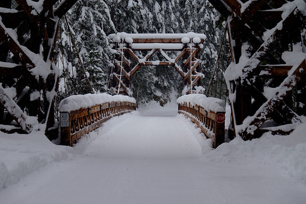 Bridge toward the Longmire campground.