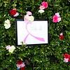 2016-05-08 OC Breast Cancer Fundraiser 007