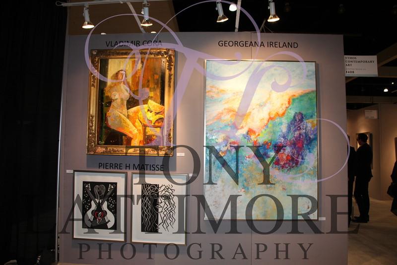 2016-01-27 LA Art Show - Georgeana Ireland 046