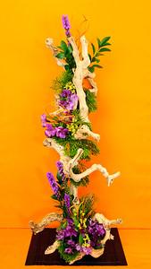 20160420 Flower Show-9352-2 edited