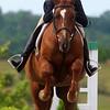 Spec Equestrian Festival