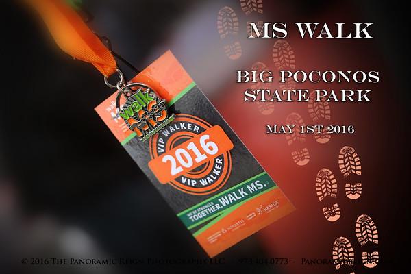 2016 MS Walk ~ Big Poconos State Park