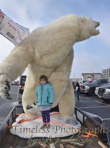 2016_Polar_Bear_Plunge_3