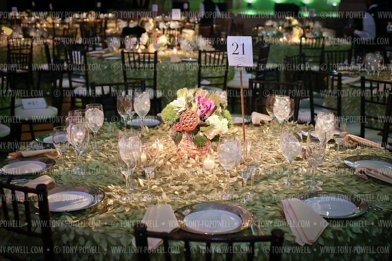 2016 Sandy Hook Promise Gala. Photo © Tony Powell. Mellon Auditorium. June 15, 2016
