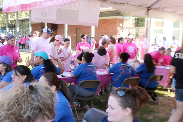 20160507 Making Strides Against Breast Cancer