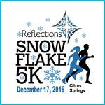 1 1 1 1 SnowFlake2016sq x480