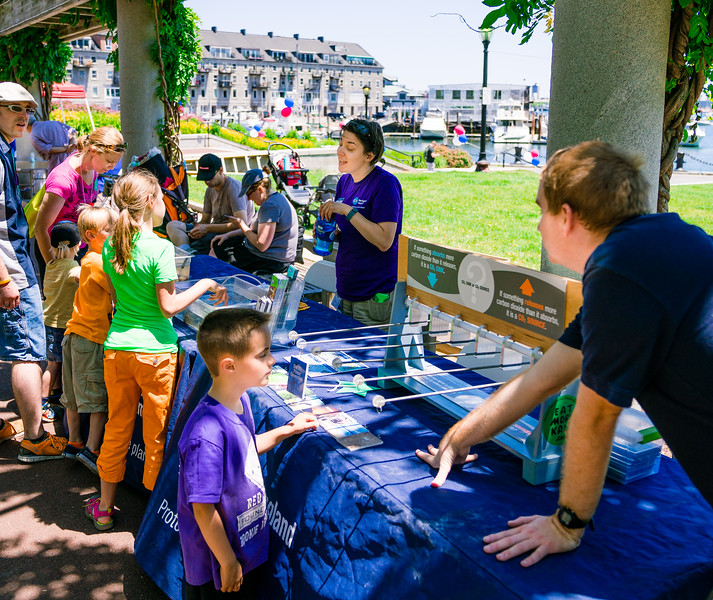 New England Aquarium touch tank