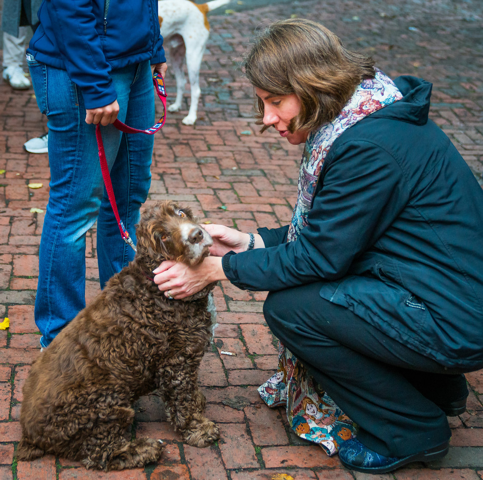 2016-10 | Blessing of the Animals-183.jpg