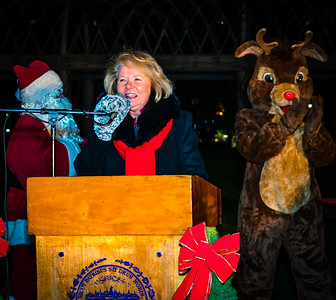 FOCCP President Joanne Hayes-Rines speaks at the trellis lighting