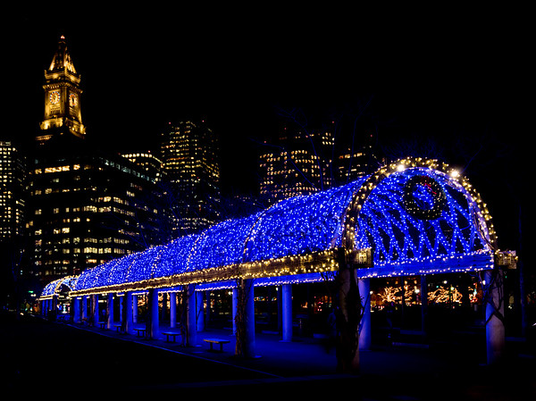 """Blue Lights"" Trellis at Christopher Columbus Park with Custom House Tower"