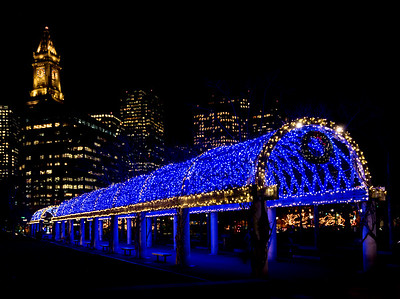 """""""Blue Lights"""" Trellis at Christopher Columbus Park with Custom House Tower"""