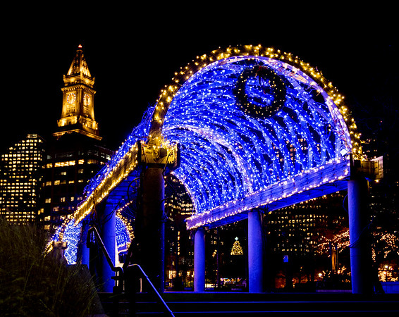 trellis at christopher columbus park lit with its iconic blue and white lights lighting l