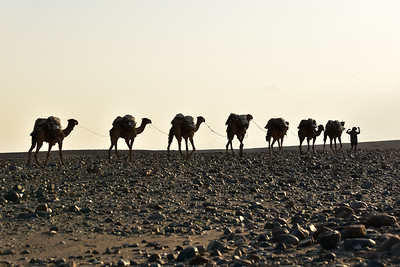 Travelling from Mek'ele to the Danakil depression