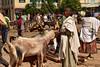 Adwa market