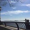 Battery Park scene April 24, 2016