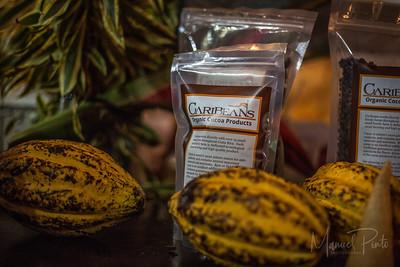Festival de Chocolate  Puerto Viejo 2016