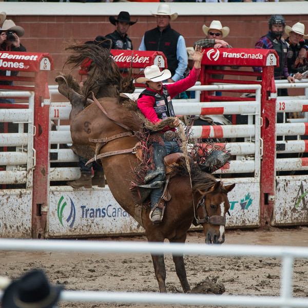 Calgary Stampede Rodeo 0223