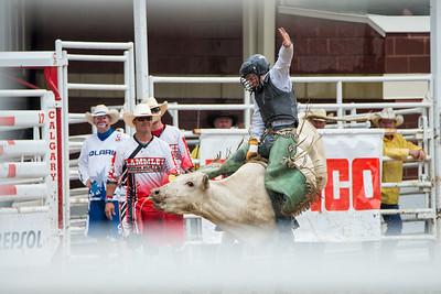 Calgary Stampede Rodeo