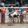Calgary Stampede Rodeo 0087