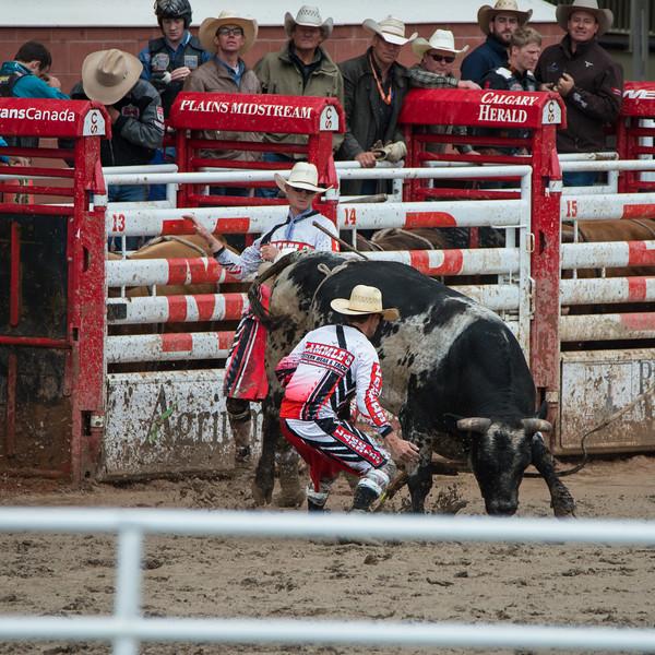 Calgary Stampede Rodeo 0290
