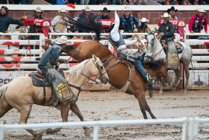 Calgary Stampede Rodeo 0057