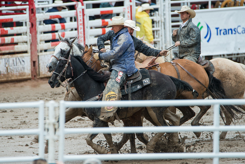 Calgary Stampede Rodeo 0135