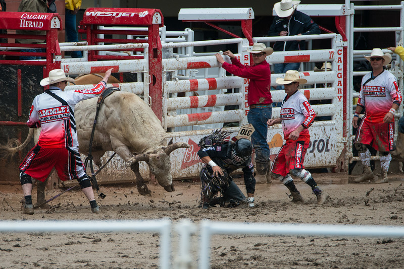 Calgary Stampede Rodeo 0260