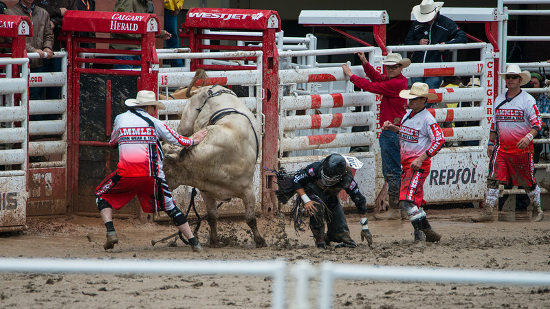 Calgary Stampede Rodeo 0261