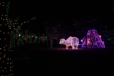 20161221-24 Albuquerque River of Lights 042