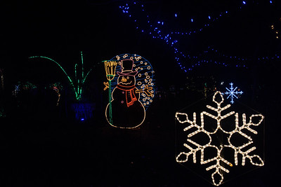 20161221-24 Albuquerque River of Lights 025