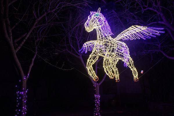 20161221-24 Albuquerque River of Lights 006