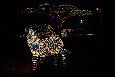 20161221-24 Albuquerque River of Lights 040