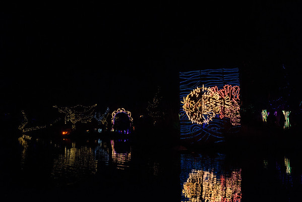 20161221-24 Albuquerque River of Lights 016