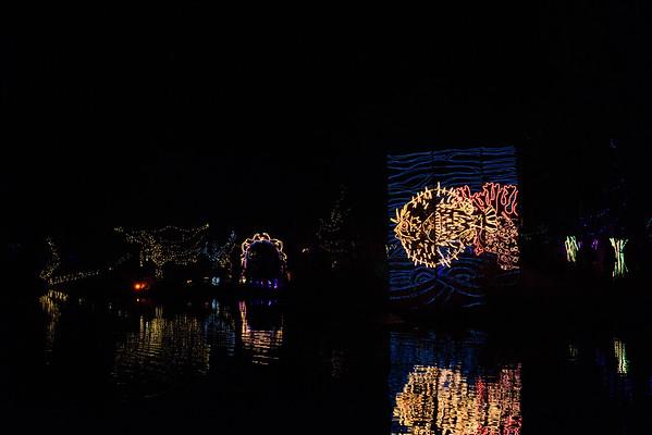 20161221-24 Albuquerque River of Lights 016