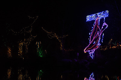 20161221-24 Albuquerque River of Lights 017