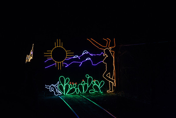 20161221-24 Albuquerque River of Lights 019