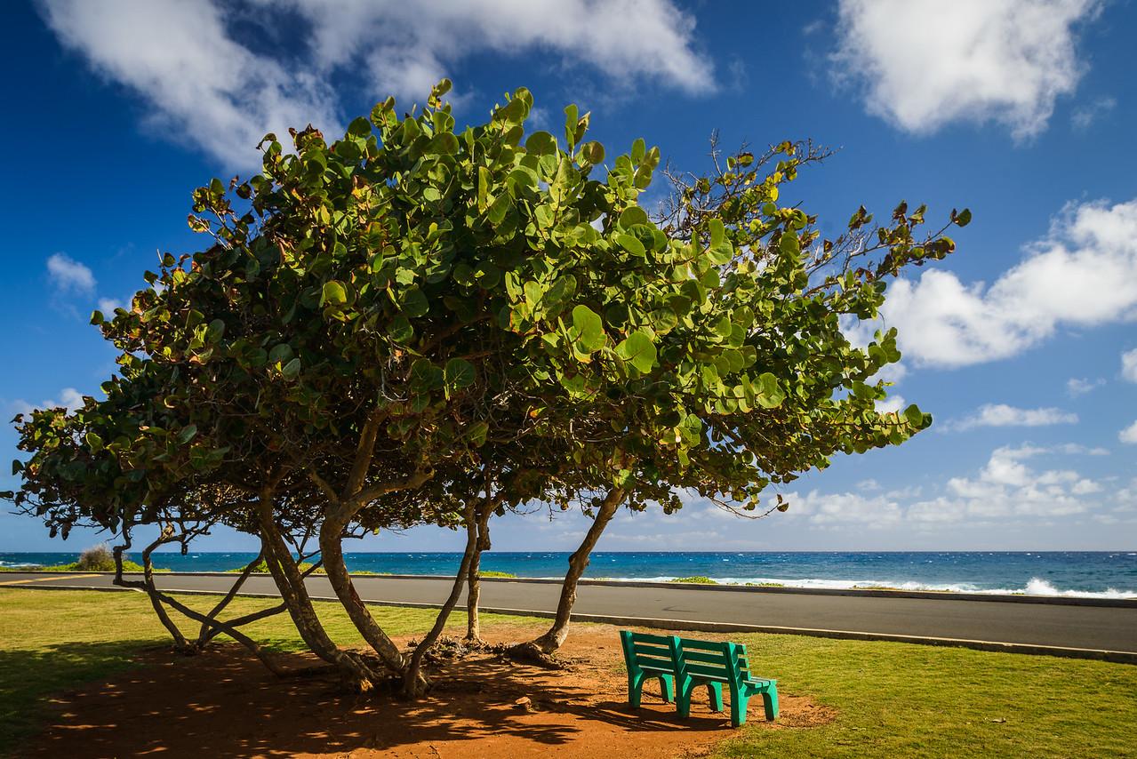Sandy Beach Benches