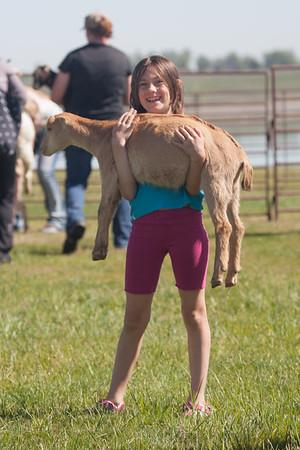 2017_05_13 Goat Yoga
