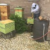 The Mosque Cares Community Garden Bee Hive