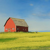 Red Barn and Mustard Field